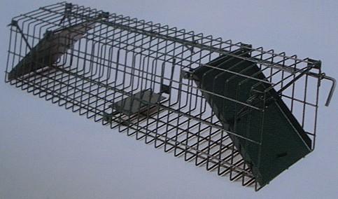 Drahtfalle 2 Einläufe schräg - 100x25x23 cm