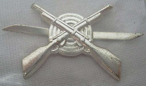 Gekreutzte Gewehre mit Splint-silberfarbig, 25x20 mm